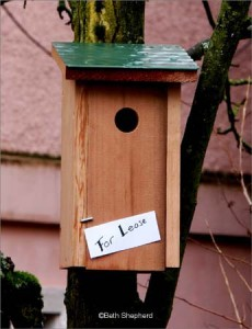 Birdhouse for lease