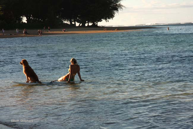 A girl and her dog Anini Beach