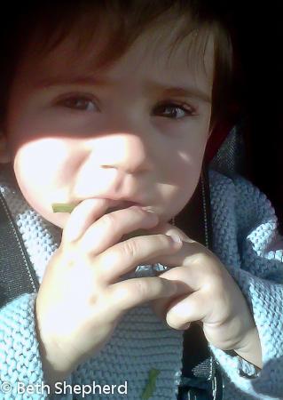 Eating arugula