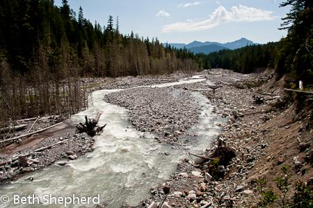 A river runs through it, Nisqually