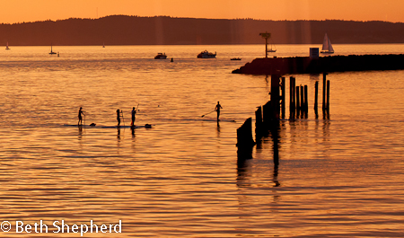 Paddleboarders on Puget Sound at sunset