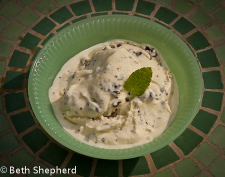 Fresh Mint Chocolate Chip Ice Cream