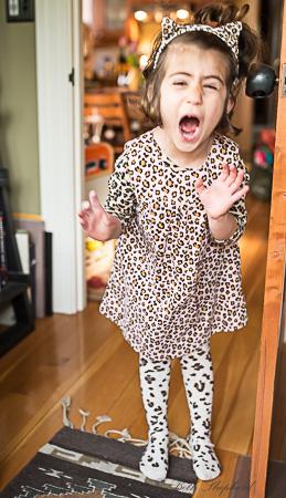 Kitty girl roars
