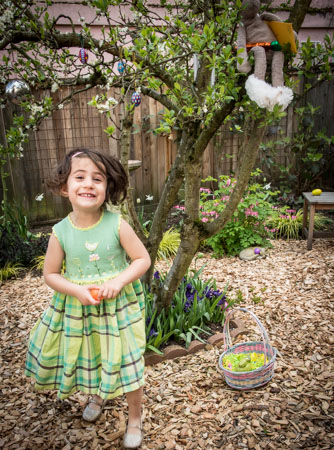Mint green Sharan bird dress