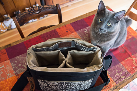 Wally and the Porteen Gear camera bag