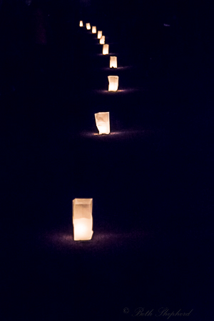 Luminaria Green Lake Pathway of Lights