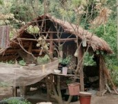 Cooking Hut