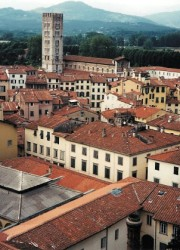 Lucca (180 x 250)