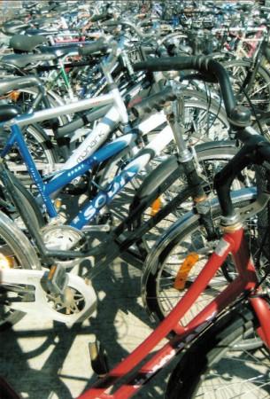 bike frames (305 x 450)