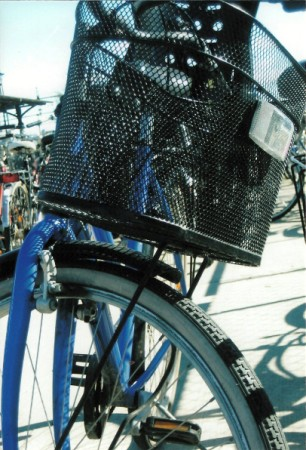 bike solo (306 x 450)