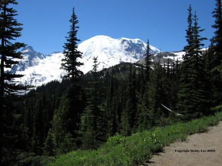 Mt Rainer 4_edited-1 (450 x 338)