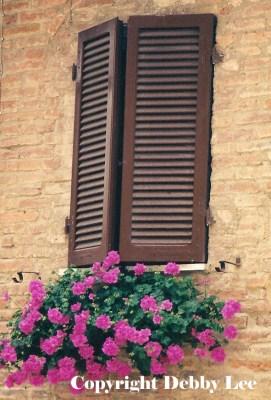 Montepulciano windows