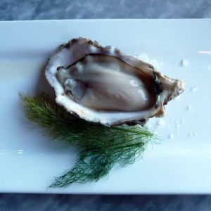 Oyster Appetizer from Spinnakers