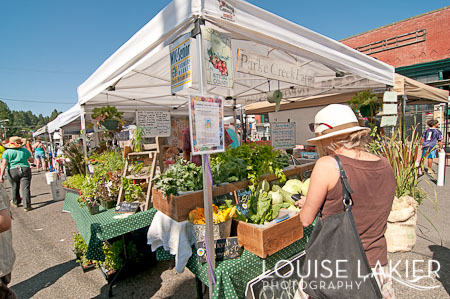 Farmer's Market, Vegetables, Roslyn, Fresh Produce