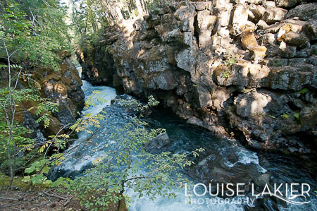 The Rogue River, Motel Del Rogue, Oregon, Grants Pass, Crater Lake National Park, Wild and Scenic Rivers