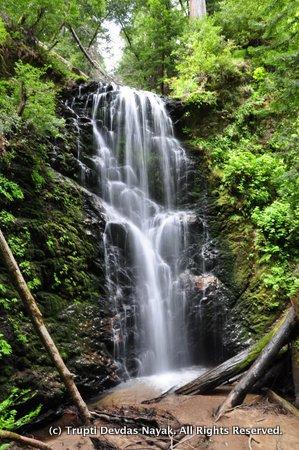 Berry Creek Waterfall Loop