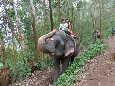 Elephant Ride with Besties in Munar