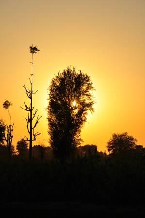 Sunset in Jojawar India