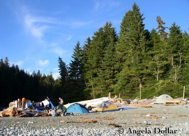 WCT camp