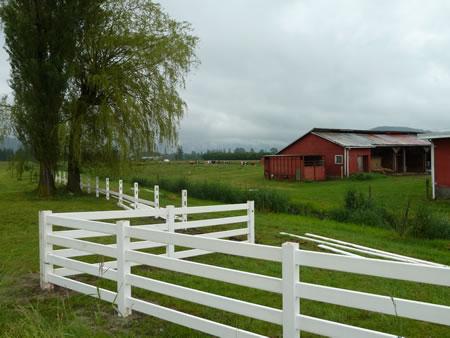 Cheese Farmhouse