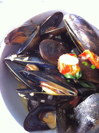 Rockwater mussels