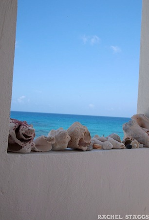 shells caribbean sea isla mujeres boutique hotel
