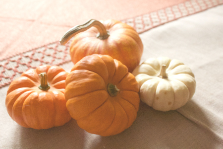 5 Fall Foods to Look Forward to This Season