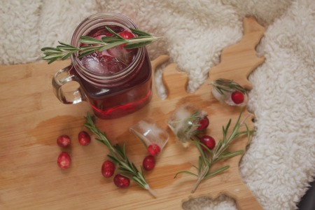 Cranberry Holiday Spritzer