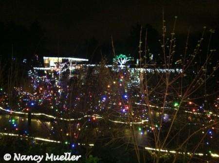 Zoo Lights (450 x 336)