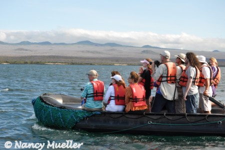 QuasarExpeditionsWhale-Watching (450 x 299)
