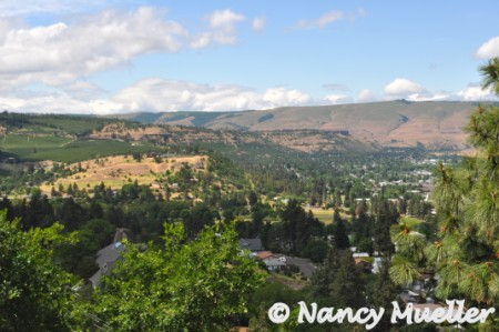 ViewofTheDalles