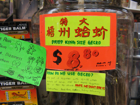 How to use gecko, Guohua herbalist, Vancouver Chinatown