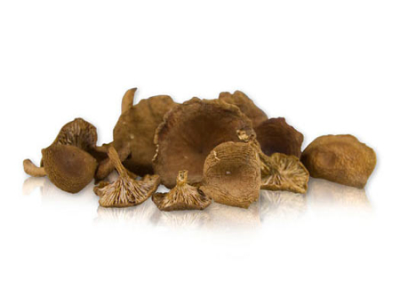 Candy Cap Mushrooms from Marx Foods