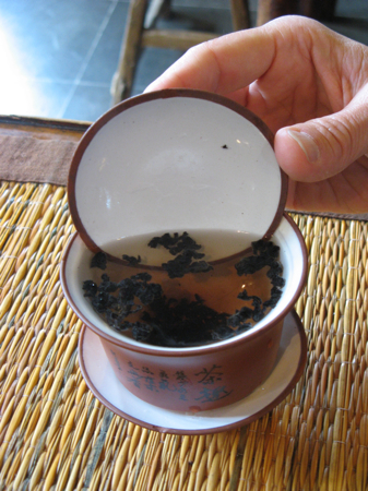 Tea tasting, Lan Su Chinese Garden, Portland, OR