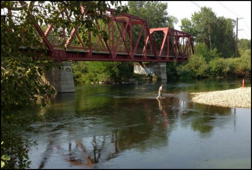 The riverside hotel local flavor on the greenbelt for Boise river fishing