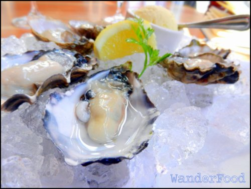Discovering P.E.I. Oysters in Ottawa