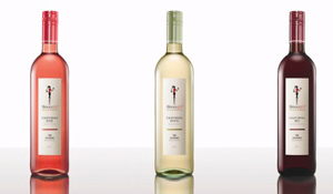 Skinnygirl Wines: Terrorism on Women's Body Image