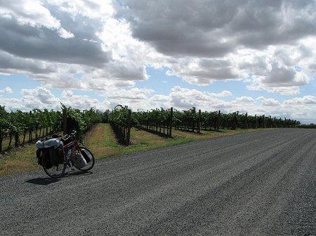 walla-walla-vineyards