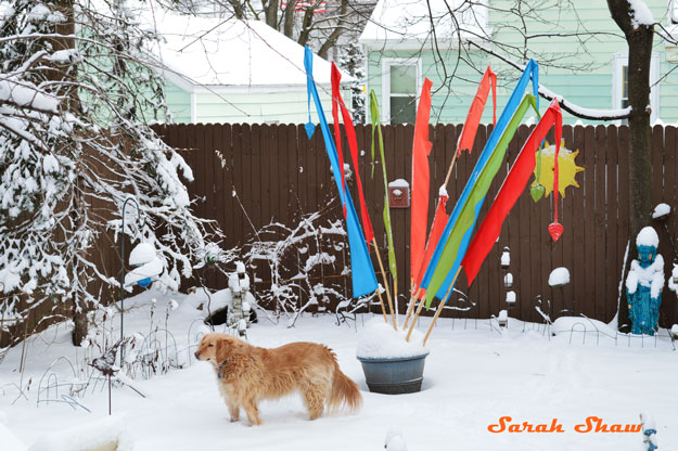 Colorful flags in a winter yard