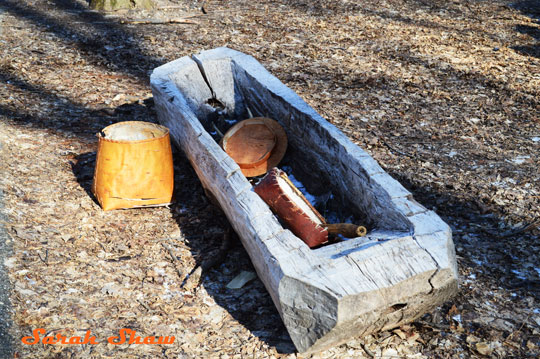 Dug out wooden trough was used my Native Americans to store maple sap to be turned into syrup - at the Fenner Nature Center