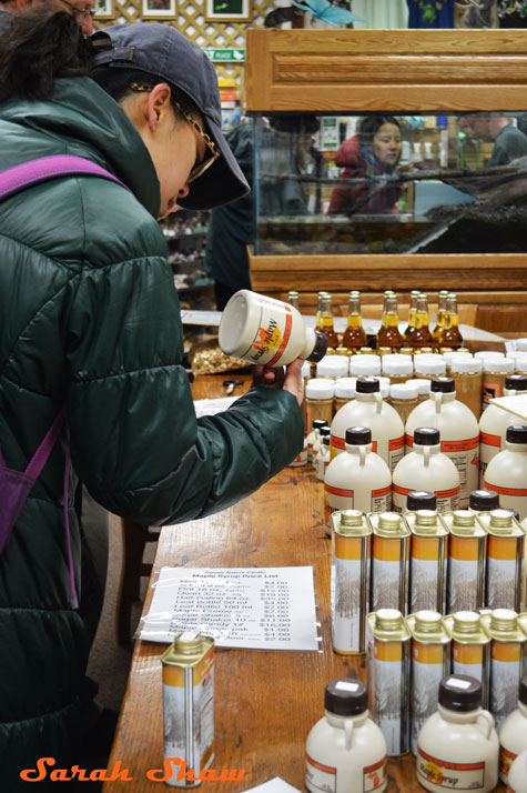 Shopping for maple syrup at Fenner Nature Center