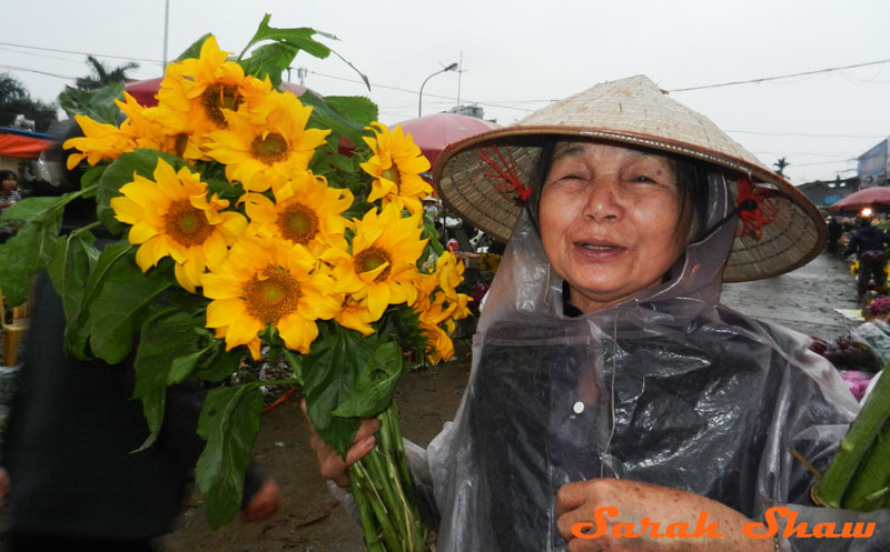 Securing her sunflowers, a woman heads out of the Hanoi Flower Marker
