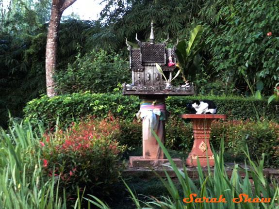 A cat visits a Spirit House in a garden of the Anantara Golden Triangle, Thailand