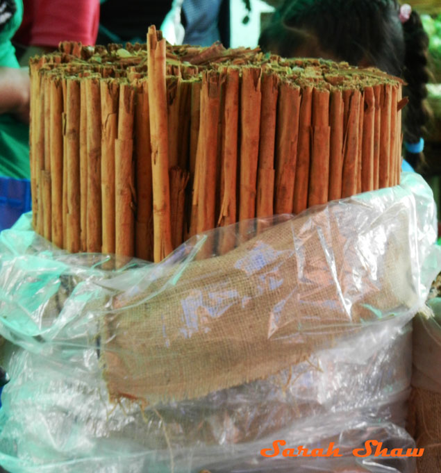 Large cinnamon sticks for sale at a local market in Oaxaca, Mexico