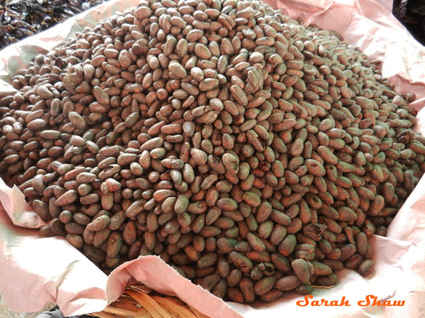 Cocoa beans for sale at a local market in Oaxaca, Mexico