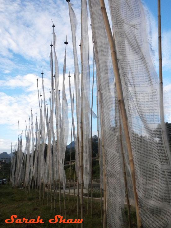 Vertical Prayer Flags near Samdrup Jongkhar