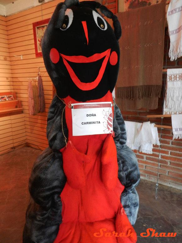 Dona Carmimita is the cochcineal mascot