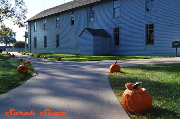 Pumpkins line a walk