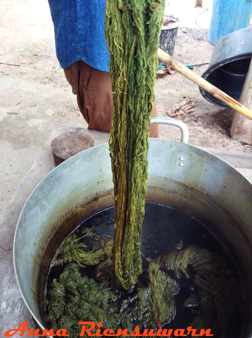 Dyeing organic cotton yarn