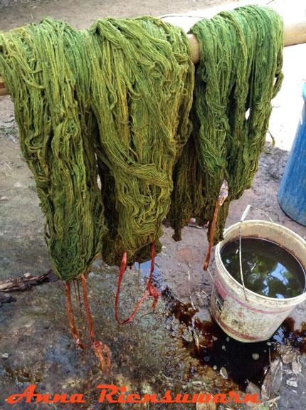 Mango bark dyed organic yarn